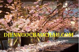 Thợ sửa điện nước tại quận Ba Đình 0934 561 156